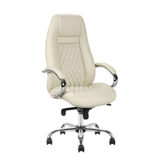 Leather & PU Office Chair 242CC